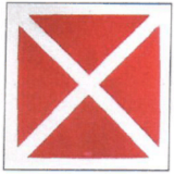 """red """"x"""" code enforcement fire department vacant buildings albany"""